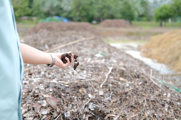 Produzione di fertilizzanti per la coltivazione del suolo nell'industria agricola