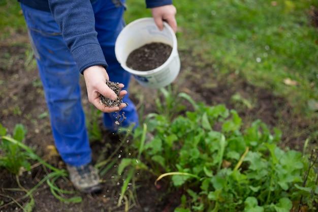 Fertilizzare il giardino con fertilizzante bio granulare