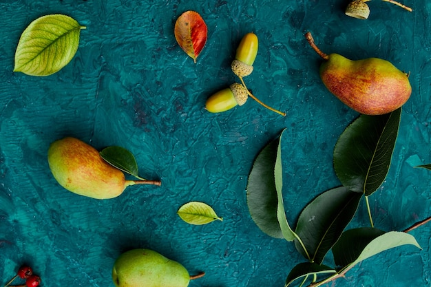 Decorazioni autunnali festive da zucche, pere, foglie, ghiande e bacche su sfondo verde, posa piatta autunnale, composizione autunnale, raccolto, giorno del ringraziamento. Foto Premium