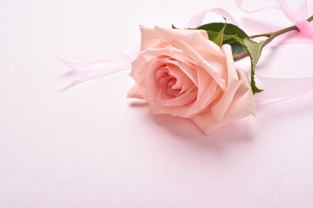 Sfondo festivo per un invito. una rosa con un posto per il testo.