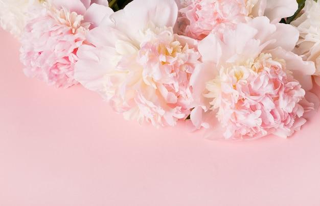Composizione di peonia rosa fiore festivo su sfondo rosa. vista dall'alto, piatta. copia spazio. compleanno, mamma, san valentino, donna, concetto di giorno delle nozze.