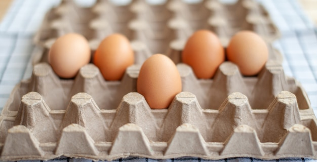 Poche uova marroni tra le celle vuote di un grande sacchetto di cartone, un uovo di gallina come prezioso prodotto nutriente