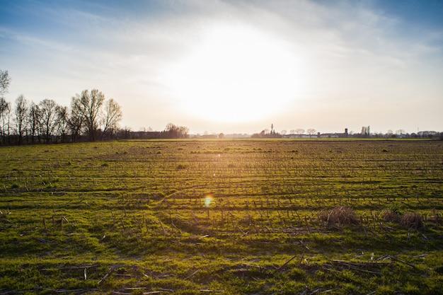 Campo nella pianura padana Foto Premium