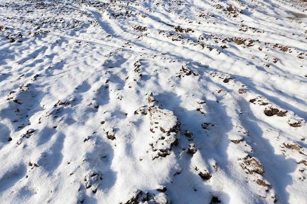 Campo in cui sono presenti tracce e tracce di automobili. nel periodo invernale dell'anno, il terreno è coperto di neve bianca dopo una nevicata. primo piano preso