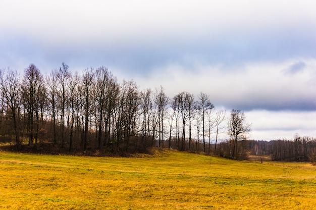 Campo nella stagione invernale