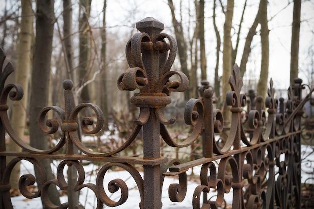 Recinto tomba arrugginito calcolato sullo sfondo di alberi spogli. avvicinamento.