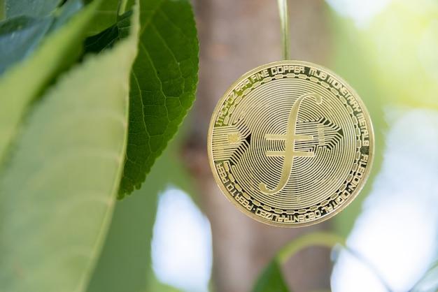Concetto di criptovaluta filecoin concetto di valuta treeborn