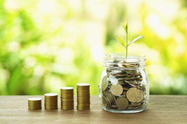 La pila dei soldi di concetto di contabilità e di finanza con la pianta si sviluppa sul vetro e sulle monete della brocca
