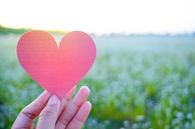 Il dito tiene il cuore rosso con lo sfondo del campo in erba