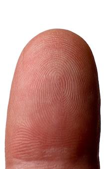 Primo piano dell'impronta digitale isolato su priorità bassa bianca.