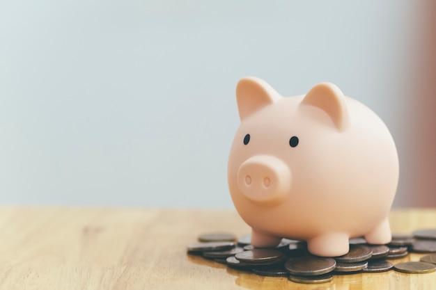 Finnace, risparmio di denaro e concetti di investimento. salvadanaio e moneta.