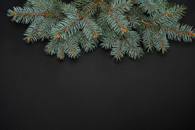 Bordo di rami di abete su sfondo nero buono per lo sfondo di natale