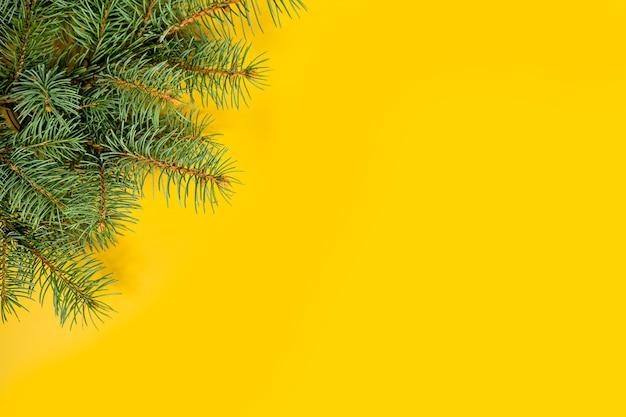 I rami di abete confinano su sfondo giallo buono per lo sfondo di natale
