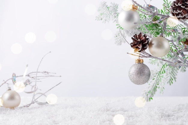 Ramo di albero di abete con coni ricoperti di neve su sfondo bianco