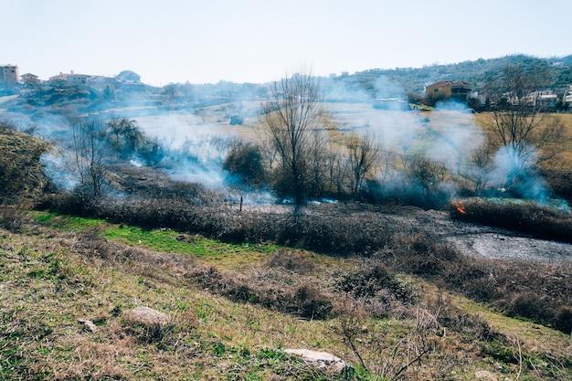 Incendio nel bosco nel pomeriggio foresta albanese