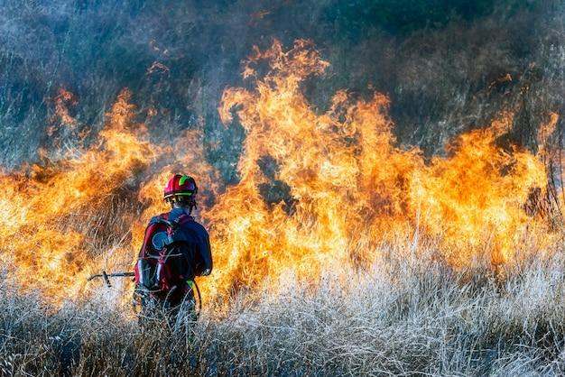 Vigile del fuoco che cerca di spegnere un incendio boschivo