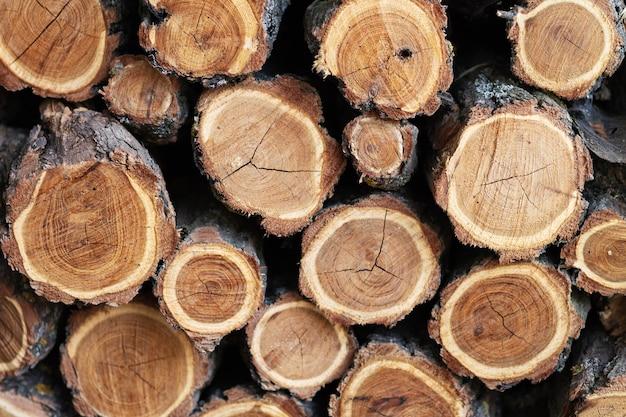 Catasta di legna da ardere per il combustibile alternativo del fondo del camino