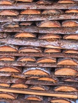 Legna da ardere accatastati nel legno tagliato, legname