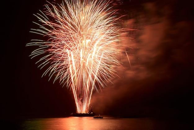 Fuochi d'artificio, saluto con lo sfondo del cielo nero
