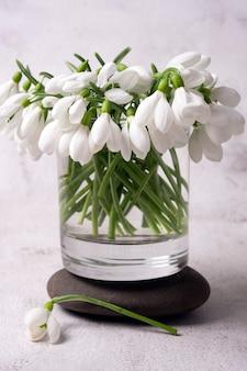 I primi fiori primaverili sono bianchi bucaneve in un barattolo di vetro.