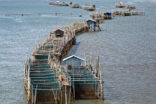Le gabbie dei pesci all'estuario laem cantano, chanthaburi, tailandia.