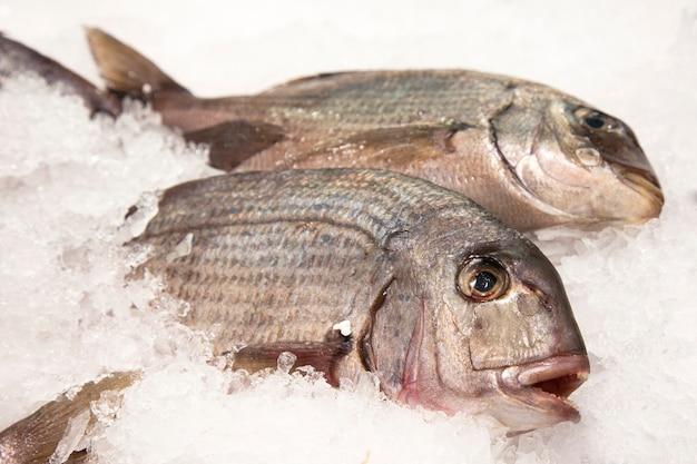 Pesce, ghiaccio, mercato, selezione, acquisto, qualità, piatto