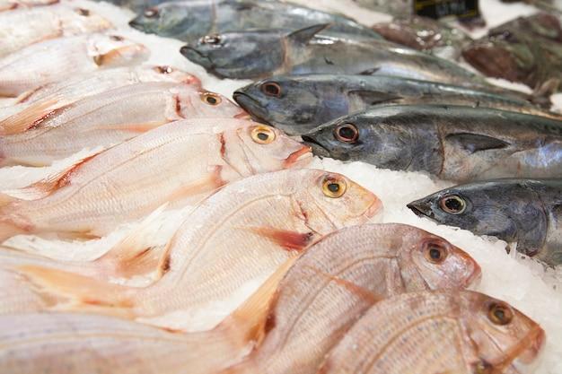 Pesce, ghiaccio, mercato, selezione, acquisto, qualità