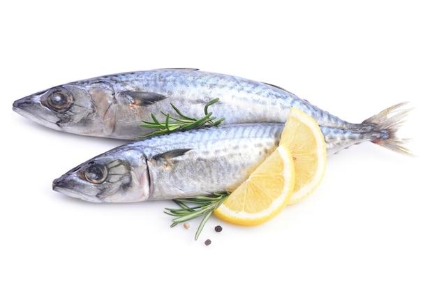 Sgombro di pesce su una superficie bianca
