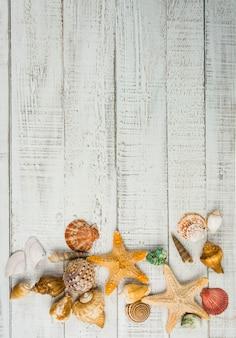 Stella di pesce e conchiglie di mare sullo sfondo in legno