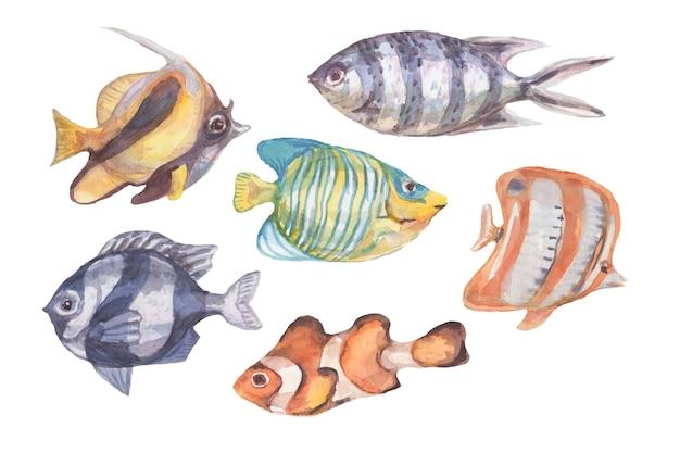 Pesce subacqueo mare oceano coralli alghe conchiglie acquerello disegnato a mano illustrazione. stampa tessile vintage natura selvaggia brillante pesci d'acquario patern senza cuciture