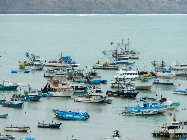 Barche da pesca nel porto