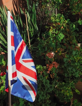 Bandiera del regno unito (uk) alias union jack con piante da appartamento