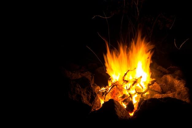 Fiamma di un fuoco, in cui brucia il sottobosco naturale, su sfondo nero