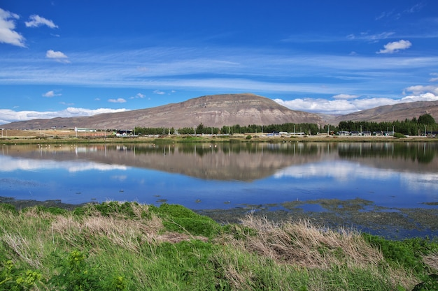 Fenicottero a laguna nimez reserva a el calafate, patagonia, argentina