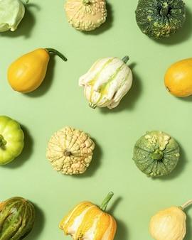 Composizione autunnale piatta fatta di varie zucche colorate decorative