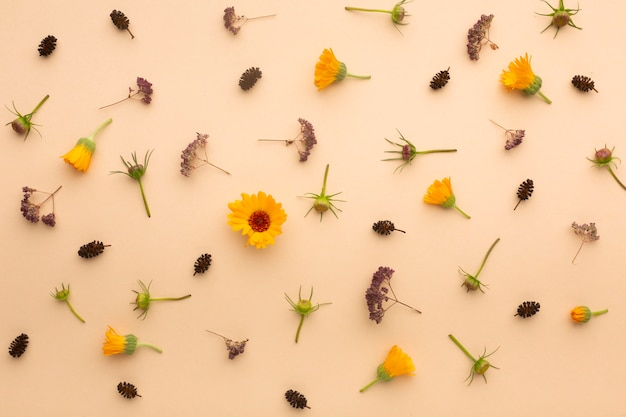 Bella disposizione piatta di fiori