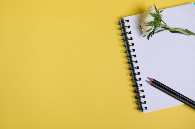 Composizione piatta laica dal fiore dell'aster autunnale e una matita colorata su un blocco note dell'organizzatore con fogli bianchi vuoti, isolato su sfondo giallo con spazio di copia