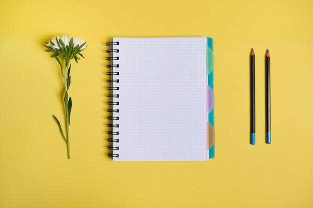 Composizione piatta con fiori di aster disposti accanto a un blocco note dell'organizzatore con fogli bianchi vuoti e due matite, isolato su sfondo giallo con spazio di copia