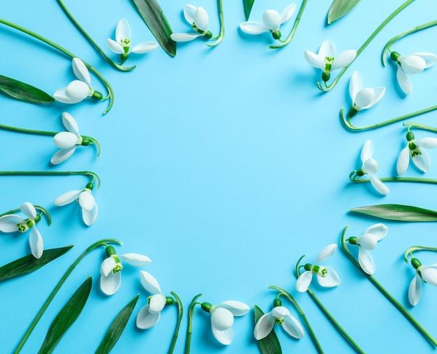 Composizione piatta laica con fiori bucaneve su sfondo di colore, spazio per il testo