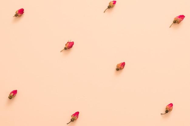 Lay piatto di boccioli di rose rosse secche su superficie color pesca