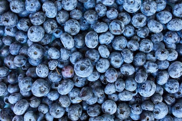 Disposizione piana dei mirtilli succosi organici freschi su fondo blu, vista superiore, spazio della copia. concetto di alimentazione sana e dietetica, antiossidante, vitamina, cibo estivo. Foto Premium