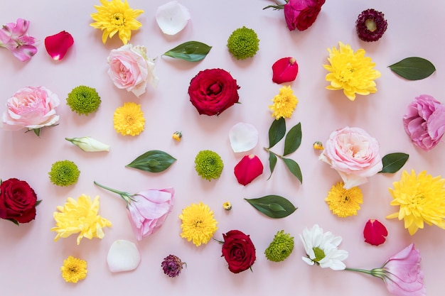 Disposizione piatta di una splendida composizione di fiori