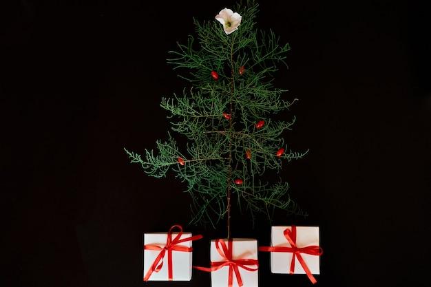 Lay piatto di foglie di aghi a forma di albero di natale con fiori e bacche, regali scatola albero di natale decorato su sfondo nero