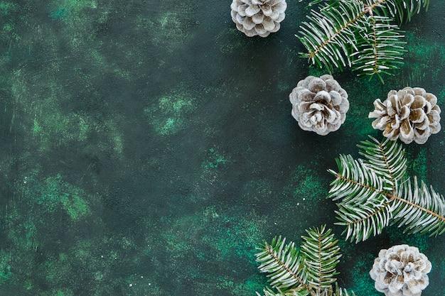 Piatti laici aghi di pino e coni su un bellissimo sfondo verde