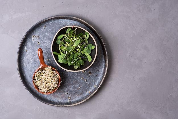Germogli di lino e girasole in ciotole su sfondo grigio, microgreens germinati per un'alimentazione sana, cibo vegetariano, copia spazio.