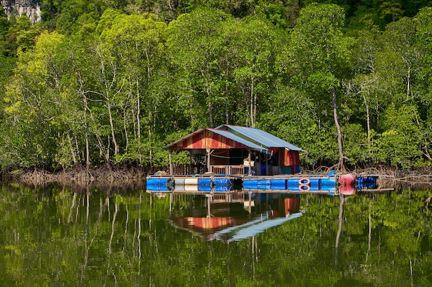 Un allevamento ittico galleggiante sull'isola di langkawi in malesia.