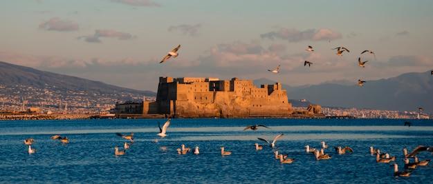 Uno stormo di gabbiani che volano in tempo tramonto su castel dell'ovo sul mare a napoli, italia. egg castle.