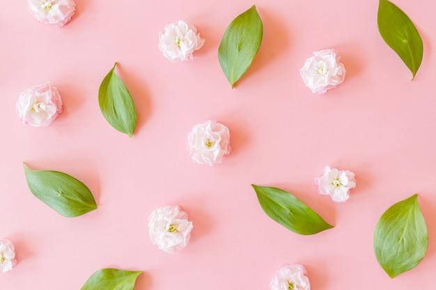 Disposizione floreale su foglie di ruscus e fiori di matthiola su carta rosa eith sfondo con texture