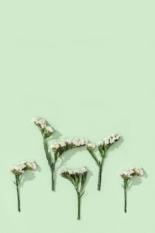 Cornice decorativa floreale da fiori secchi di limonium, foglie e piccoli fiori su un verde tenue. sfondo naturale fiorito, natura o concetto di ambiente. vista dall'alto, piatto.
