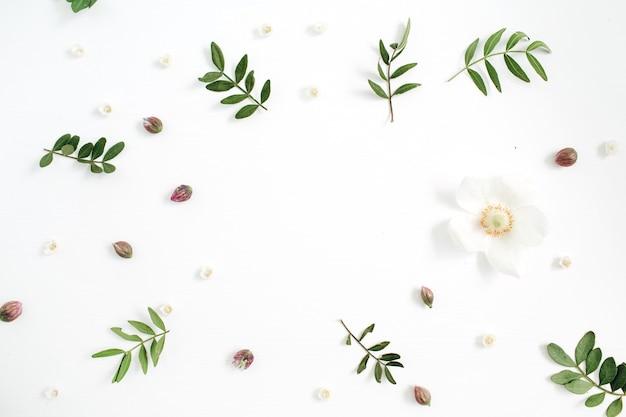 Cornice floreale con boccioli di fiori, foglie verdi, rami su bianco